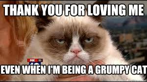 Grumpy Cat Meme Love - thank you for loving me even when i m being a grumpy cat grumpy