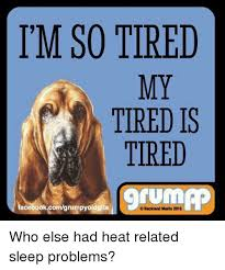 I M So Tired Meme - i m so tired my tired is tired tum facebookcomgrumpyoldgits backland
