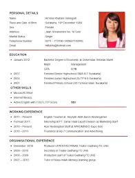 exle of cv resume great cv exle exles of curriculum vitae an resume experience