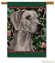 weimaraner glass ornament our weimaraner glass
