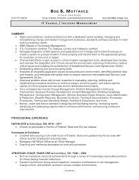 It Manager Sample Resume Change Management Resume Examples Resume For Your Job Application