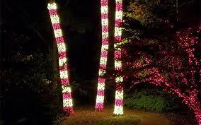 how to wrap christmas lights around a tree gallery tree wrap focal tree lighting nashville christmas