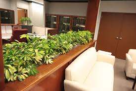 envirogreenery interior plant services nh and ma