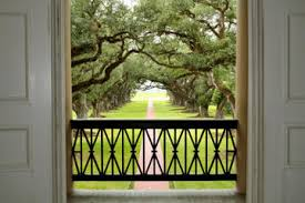 the 10 best new orleans tours excursions activities 2017