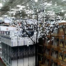 costco lights images search costco tree