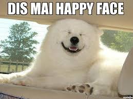 Happy Dog Meme - happy dog dis mai happy face weknowmemes
