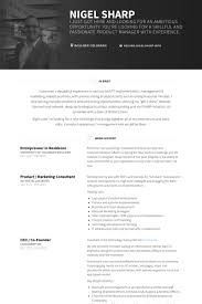 Sample Resume For Ceo by Entrepreneur Resume Samples Visualcv Resume Samples Database