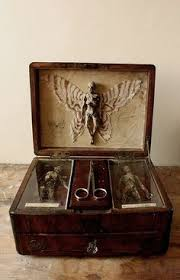 cabinet of curiosities skeletons home ideas interiors