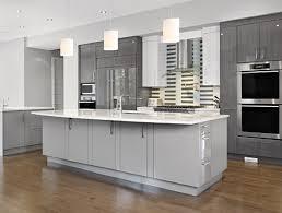 Grey And White Kitchen Designs Kitchen Grey And White Kitchen Ideas Grey And White Kitchens