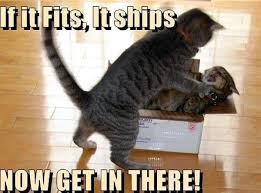 Mail Meme - cat mail meme by crazywhitemage memedroid