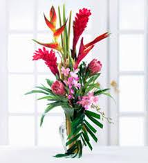 bird of paradise flower arrangement bird of paradise