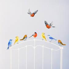 stickers chambre enfants stickers aquarelle oiseaux