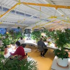 Google Office Design Philosophy Google Has Had Negative Effect On Office Design Says Jeremy Myerson