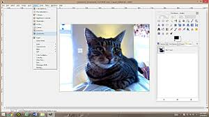 making coloring pages photographs gimp