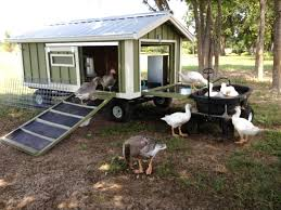 large portable goose or duck coop wagon with water catchment