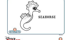 seahorse disney junior india