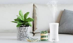 amazon black friday code fujifilm instax 300 amazon coupon code essential oil diffuser for 17 99 southern
