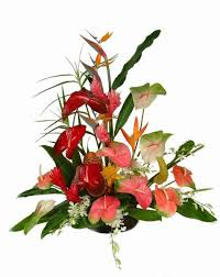 same day delivery flowers tropical flower arrangement cincinnati florist adrian