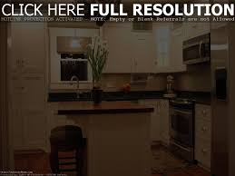 What Are The Best Kitchen Cabinets Quartz Countertops Oak Cabinets And On Pinterest Idolza