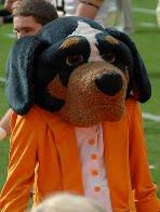 bluetick coonhound smokey tennessee vols football traditions nickname and mascot