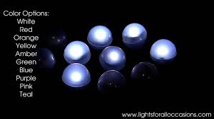 berries glowing led lights 10 pack white