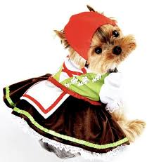 Dog Halloween Costumes 25 Cute Dog Costumes Ideas Puppy Costume