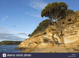 eroded sandstone sea cliffs painted cliffs maria island n p