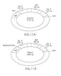 homelux underfloor heating wiring diagram homelux wiring diagrams