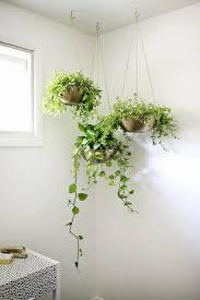 trendy hanging indoor planter 133 hanging indoor planters canada
