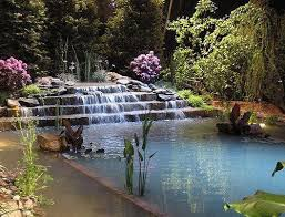 Natural Backyard Pools by 31 Best Waterfalls Into Pools Images On Pinterest Landscaping