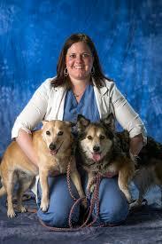 our doctors veterinary specialty center of tucson tucson arizona