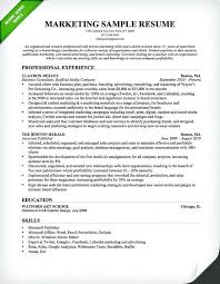 sample resume for experienced sales and marketing professional 5