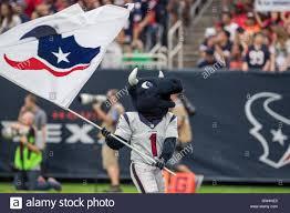 Houston Texans Flags Houston Texas Usa 11th Sep 2016 Houston Texans Mascot Toro