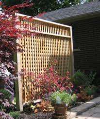 Patio Privacy Ideas Extraordinary Patio Privacy Screen For Your Design Home Interior