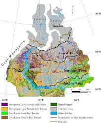 Russian Boreal Forest Disturbance Maps by Spatial Heterogeneity Of Greening And Browning Between And Within