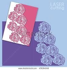 cut roses stock images royalty free images u0026 vectors shutterstock