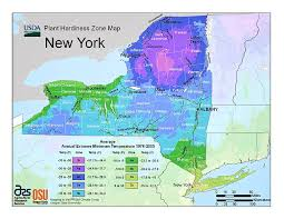 Gardening Zone By Zip Code - in the zone usda u0027s new plant hardiness map shows we u0027re getting
