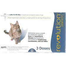 revolution for cats single dose petsegypt com