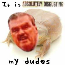 Its Friday Meme Disgusting - it is absolutely disgusting my dudes it is wednesday my dudes