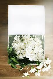 wedding flowers hshire gardenia flowers farnham the best flower of 2018