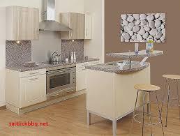 choix de peinture pour cuisine quelle couleur de peinture pour une cuisine en bois clair pour idees