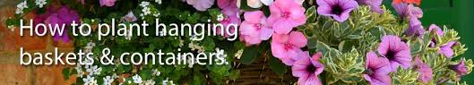 Best Plants For Hanging Baskets by Garden Design Garden Design With Best Plants For Hanging Baskets
