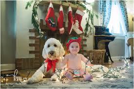 dog baby and christmas lights adorable christmas card idea