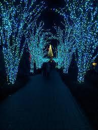 Botanical Gardens Atlanta Christmas Lights atlanta botanical garden insideinfo thegarden
