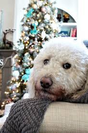 christmas tree decorating ideas refresh restyle