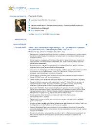 resume examples for flight attendant european format cv 2014 airlines