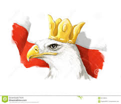 cartoon eagle and polish flag head in crown stock illustration