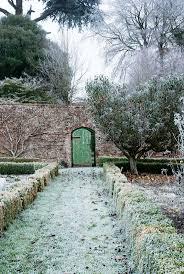 9600 best winter gardening images on pinterest winter garden