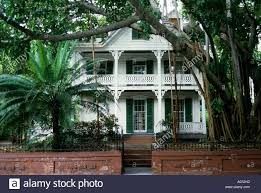old colonial mansion house with tree fern and banyan tree key west