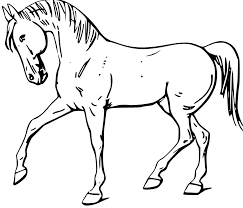 horse print coloring pages cooloring horse outline